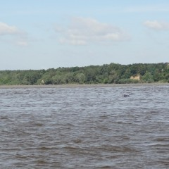 splyw-kajakowy-rzeka-wisla-modlin-twierdza-wyszogrod-13