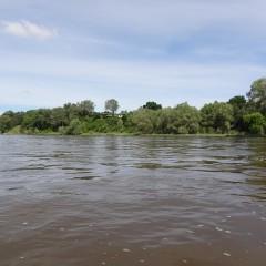 splyw-kajakowy-rzeka-wisla-modlin-twierdza-wyszogrod-14
