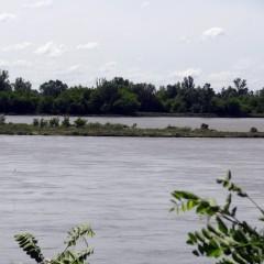splyw-kajakowy-rzeka-wisla-modlin-twierdza-wyszogrod-28