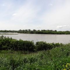 splyw-kajakowy-rzeka-wisla-modlin-twierdza-wyszogrod-29
